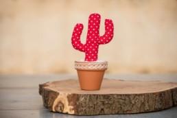 Cactus boda 1